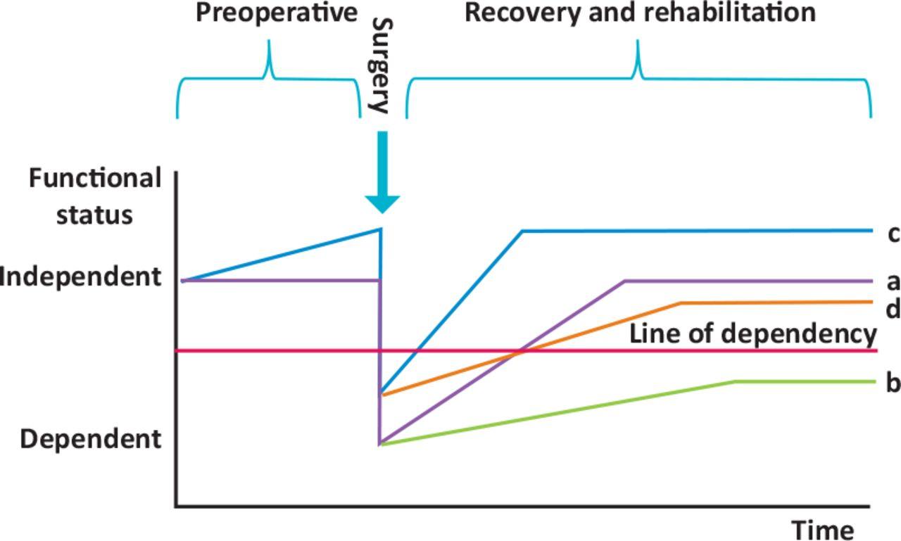 Prehabilitation graph against time